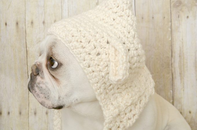 Little Lamb- Easy Crochet Hat