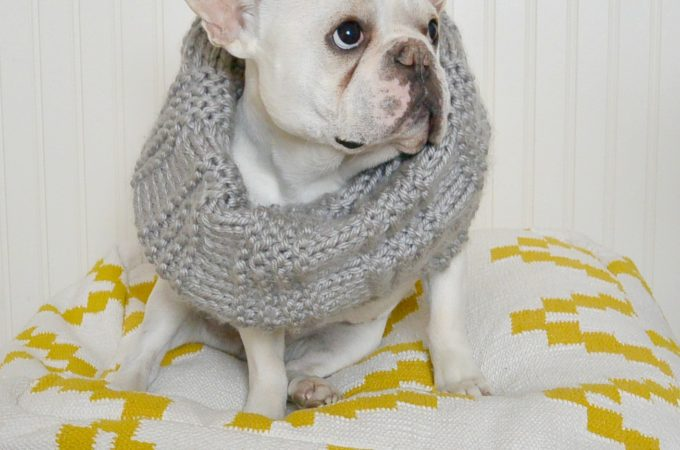 Scarves and Cowls – Oh My!