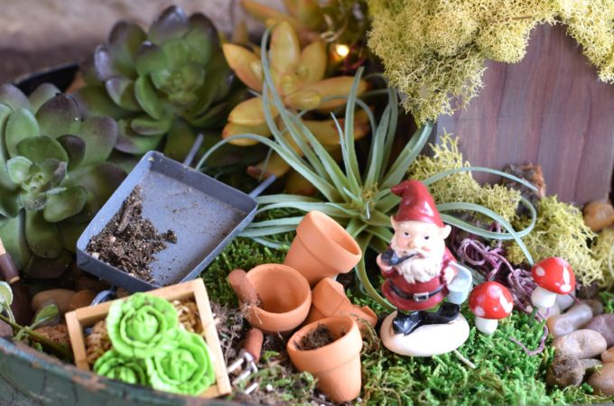 How To Make A Fairy Garden (with kids)