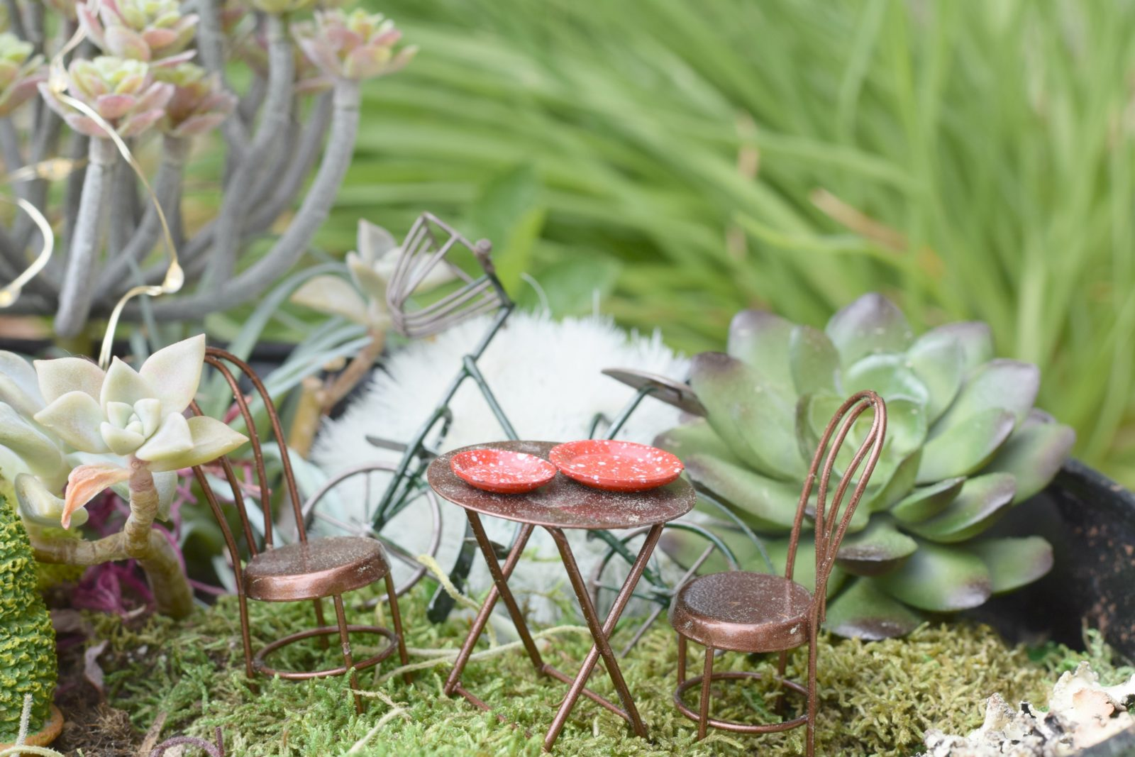How To Make A Fairy Garden with kids Mama In A Stitch