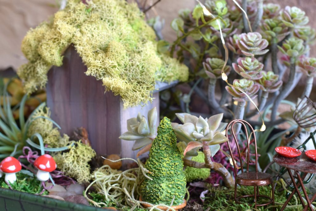 Fairy Garden Michaels Craft Store