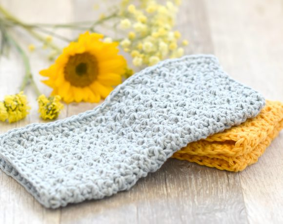 Farm House Washcloth Crochet Pattern